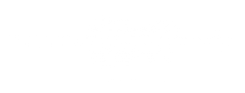 the voice in my hands: an indie theatre company